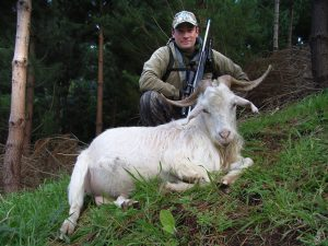 Wild Goat Hunting